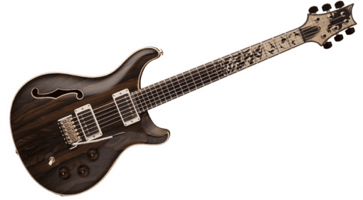 PRS DGT 'Birds Of A Feather' limited edition musikmesse 2016
