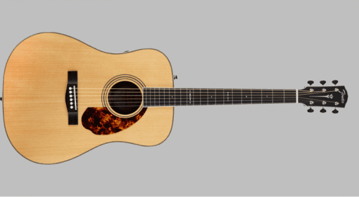 Fender PM-1 Dreadnought