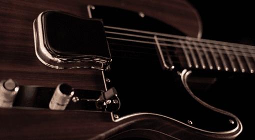 Fender Custom Shop George Harrison Telecaster CITES 2017 laws