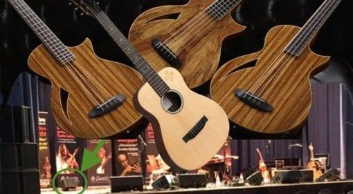 Martin Ed Sheeran Divide Acoustic Guitar Hughes & Kettner 'Mystery' Amp and ESP LTD TL-4Z fretless bass and 5-string TL-5SM 5-string bass
