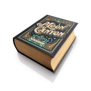 Moon Canyon 'book' box