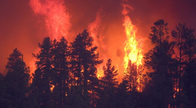 Fire Destroys Wayne Charvel's Guitar Workshop
