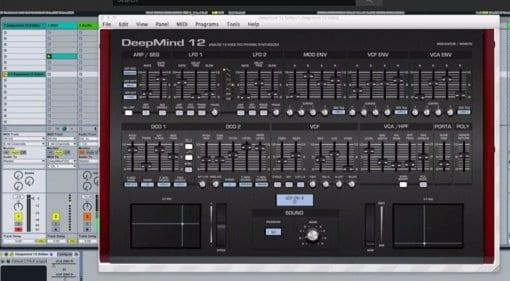 Momo DeepMind 12 VST editor