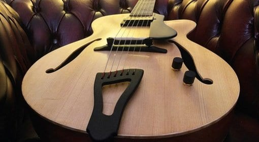 Fibonacci Guitars Ambassador