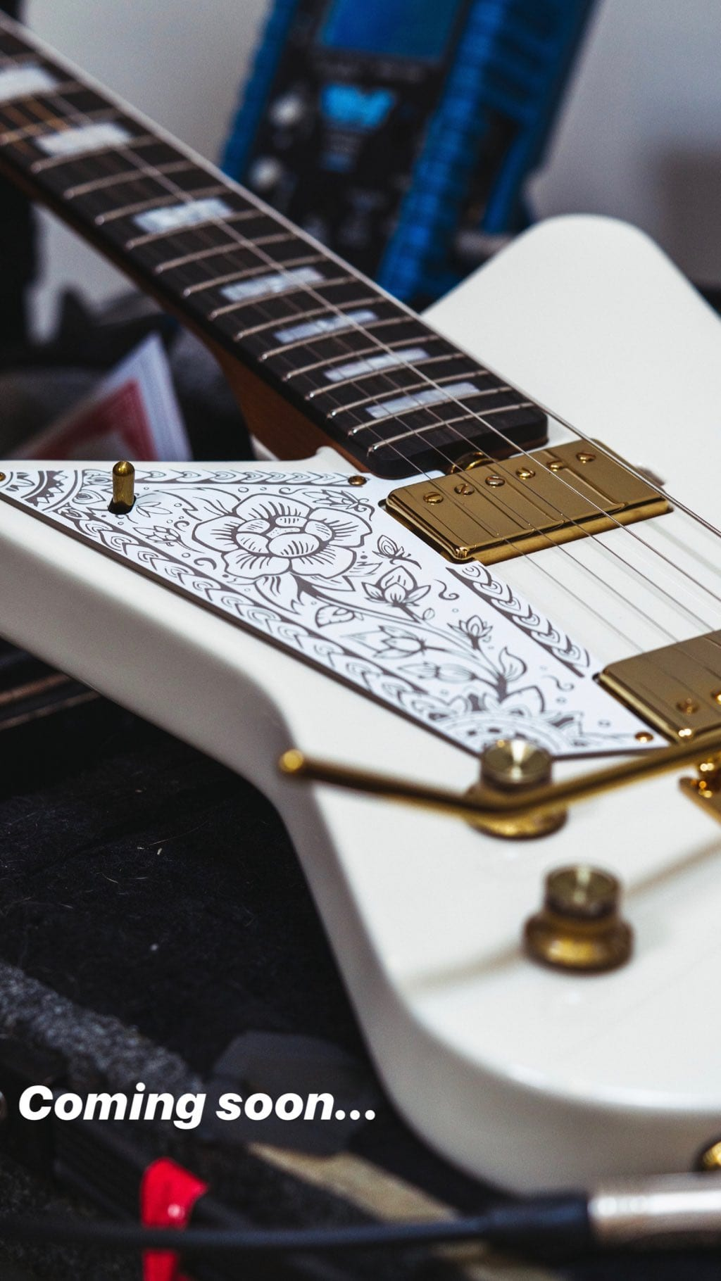 MusicMan Mariposa teaser