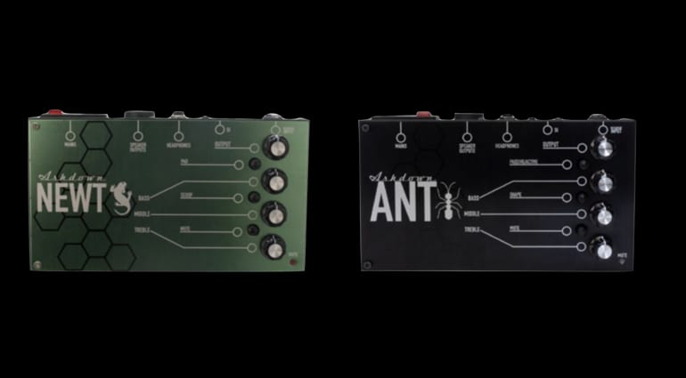 Ashdown The Ant and The Newt ultra lightweight amps
