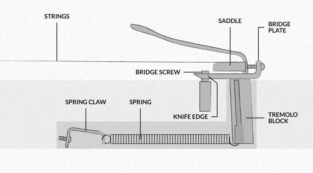 Guitar Tremolo Diagram Set Up Your Trem