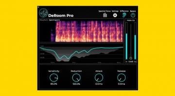 Accentize DeRoom Pro