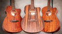 Harley Benton Exotic Wood Custom Line