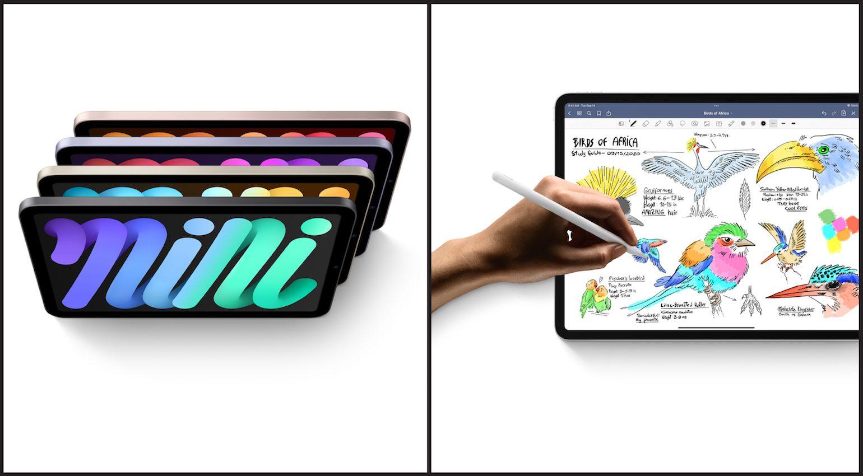 The New iPad and iPad mini