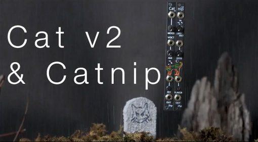 2HP Cat v2 and Catnip