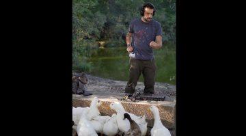Ducks and MPCs
